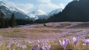 Górskie szlaki. Najpiękniejsze doliny w Tatrach