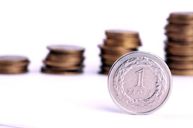 Gorsze nastroje na światowych rynkach powodują, że polska waluta się osłabia /© Panthermedia