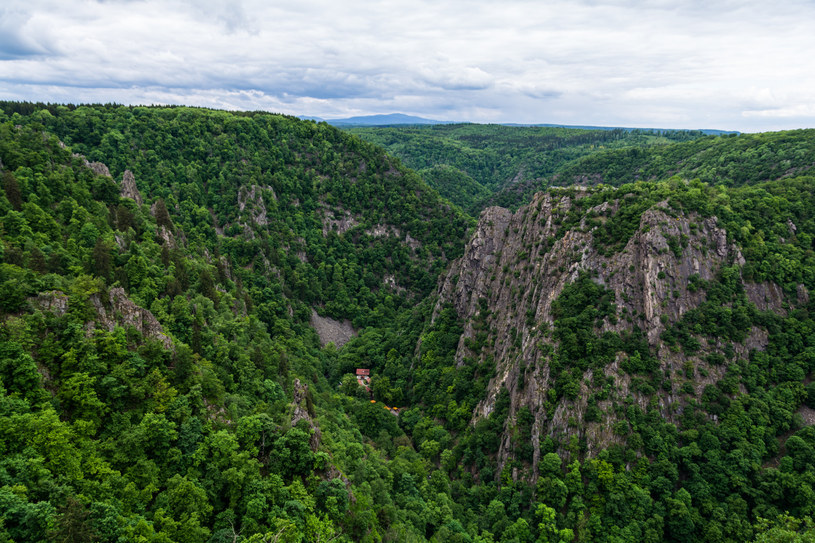 Góry Harz to jedne z najbardziej malowniczych pasm w Europie /123RF/PICSEL
