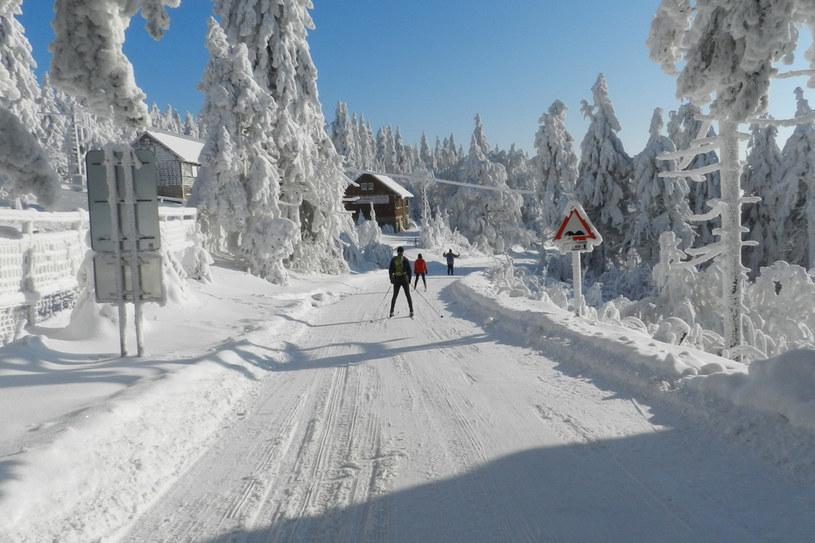 Góry Orlickie /Styl.pl/materiały prasowe