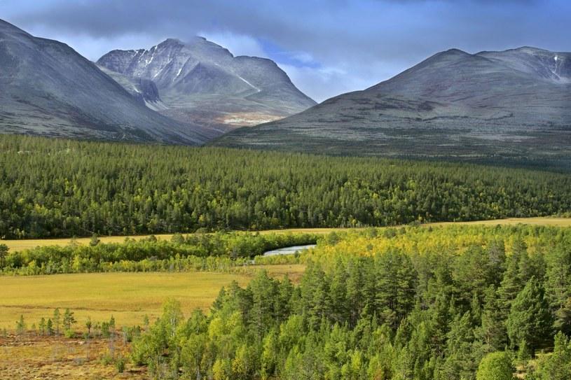 Górzysty krajobraz Norwegii / zdj. ilustracyjne /Steffen & Alexandra Sailer /East News