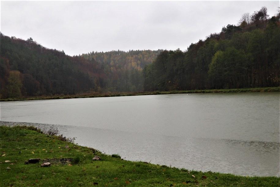 Gospodarstwo rybackie Dolina Będkowska /Jacek Skóra /RMF FM