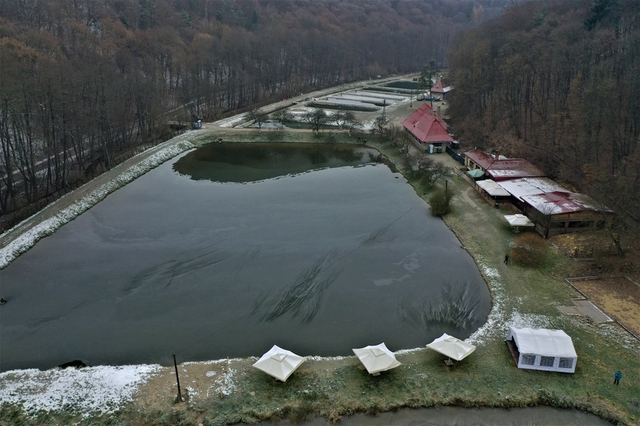 Gospodarstwo rybne w Dolinie Będkowskiej /Jacek Skóra /RMF FM