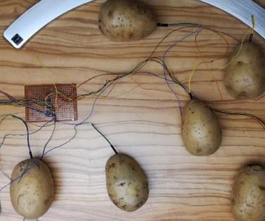 Gracz zagrał w Minecrafta wykorzystując do tego kontroler z ziemniaków