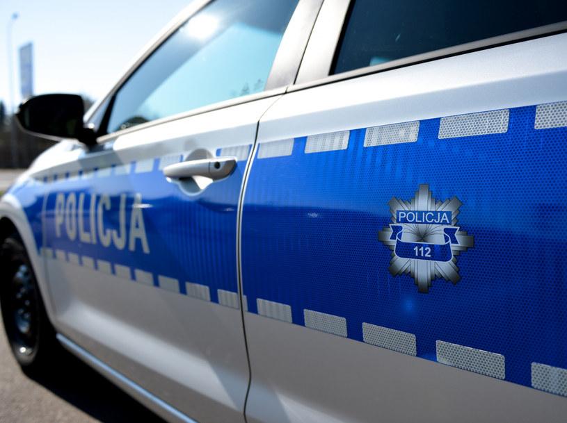 Graczy musieli uspokoić policjanci /Łukasz Solski /East News