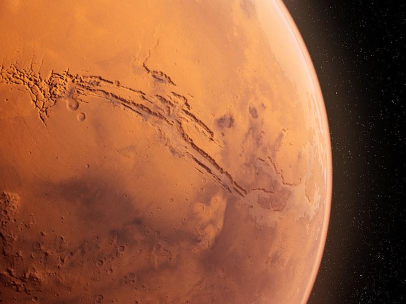 Grafika komputerowa przestawiająca powierzchnię Marsa /123RF/PICSEL