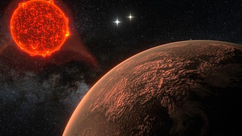 Grafika prezentująca Proximę Centauri i jej skalistą egzoplanetę /materiały prasowe