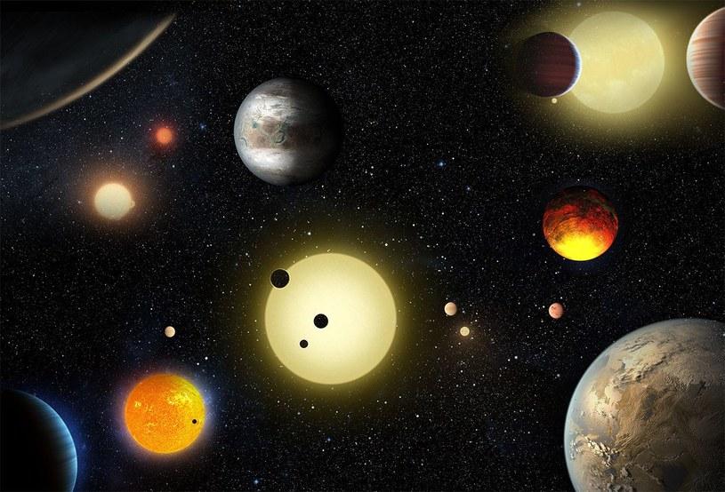 Grafika prezentująca różne egzoplanety wykryte przez teleskop Kepler /materiały prasowe