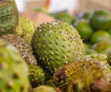 Graviola:  Wzmacnia odporność, chroni przed chorobami