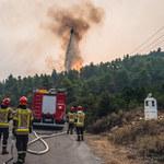 Grecja: Polscy strażacy uratowali miasto. Powstrzymali pożar lasu