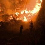 Grecja: Strażacy opanowali pożary na Peloponezie. Eubea wciąż płonie