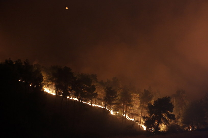 Grecja zmaga się z pożarami lasów /KOSTAS TSIRONIS /PAP/EPA