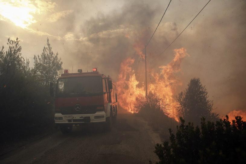 Grecję trawią pożary /ALEXANDROS VLACHOS /PAP/EPA