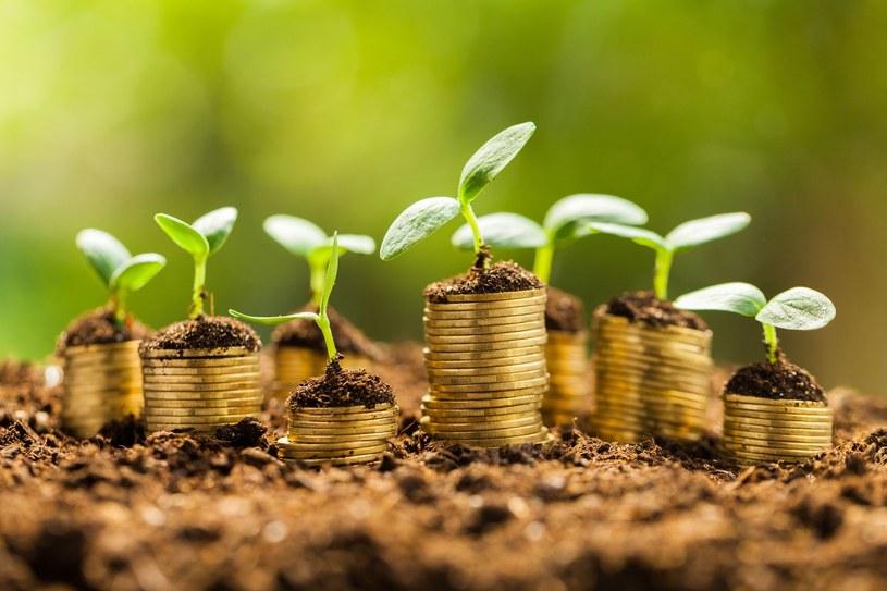 Greencoin to alternatywna waluta, która będzie swoistym wynagrodzeniem za postawę i działania pro środowiskowe mieszkańców Gdańska (zdj. ilustracyjne) /123RF/PICSEL