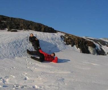 Grenlandia - szansa dla specjalistów