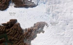 Grenlandzki lodowiec Jakobshavn rośnie trzeci rok z rzędu