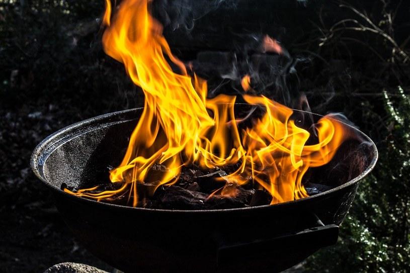 grill /© Photogenica