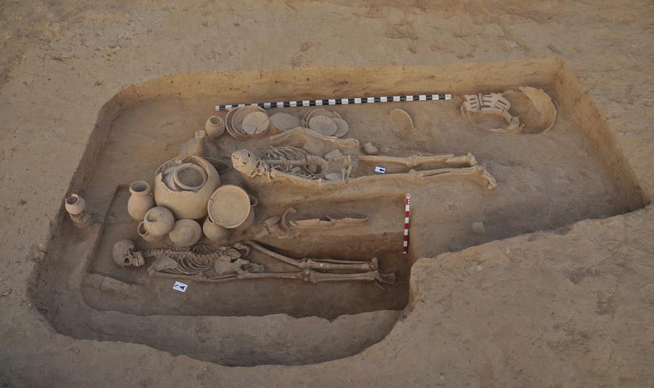Grobowiec tajemniczej pary został odnaleziony w mieście Rakhigarhi, w Indiach. /journals.plos.org /