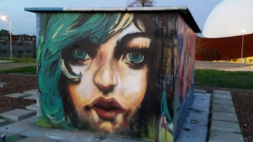 Groningen, Holandia /Ilona Kecskés /Scoopshot