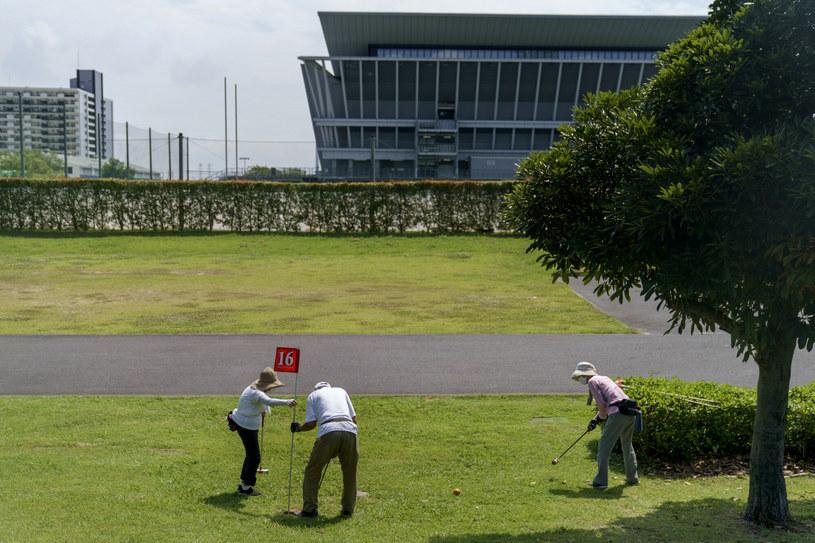 Ground Golf to odmiana golfa wywodząca się z Japonii /AP/Associated Press/East News /East News