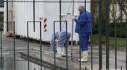 Groźny wirus ptasiej grypy H5N8 po raz pierwszy w Europie