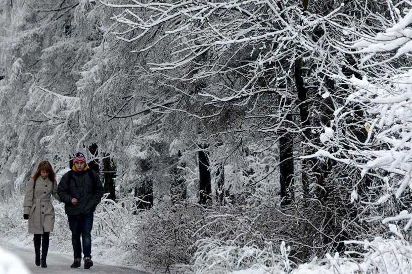 Grudzień 2013 roku był najcieplejszym w Rosji od 1891 /AFP