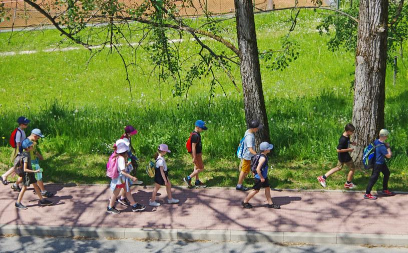 Grupa dzieci na koloniach letnich; zdj. ilustracyjne /Marek Bazak /East News