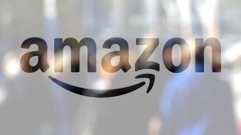 Grupa pracowników firmy Amazon pikietowała przed magazynem w Sadach pod Poznaniem /123RF/PICSEL