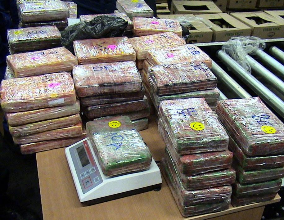 Grupa sprowadziła z Dominikany co najmniej 200 kg kokainy (zdj. ilustracyjne) /Izba Celna /PAP