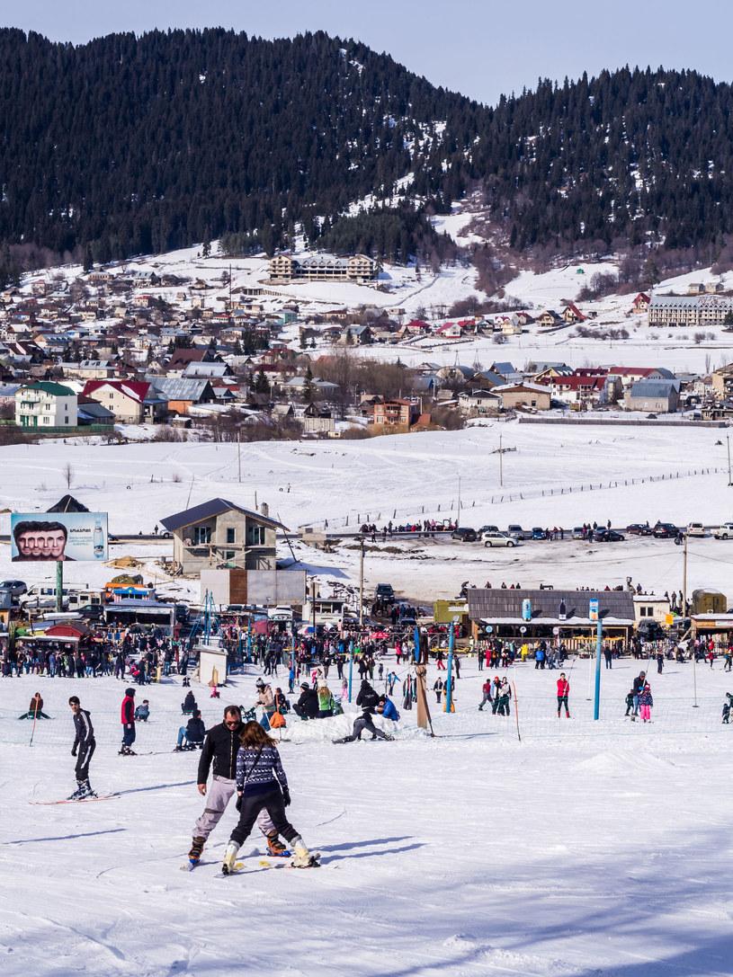 Gruzja, ośrodek narciarki w Bakuriani /Magdalena Paluchowska /123RF/PICSEL