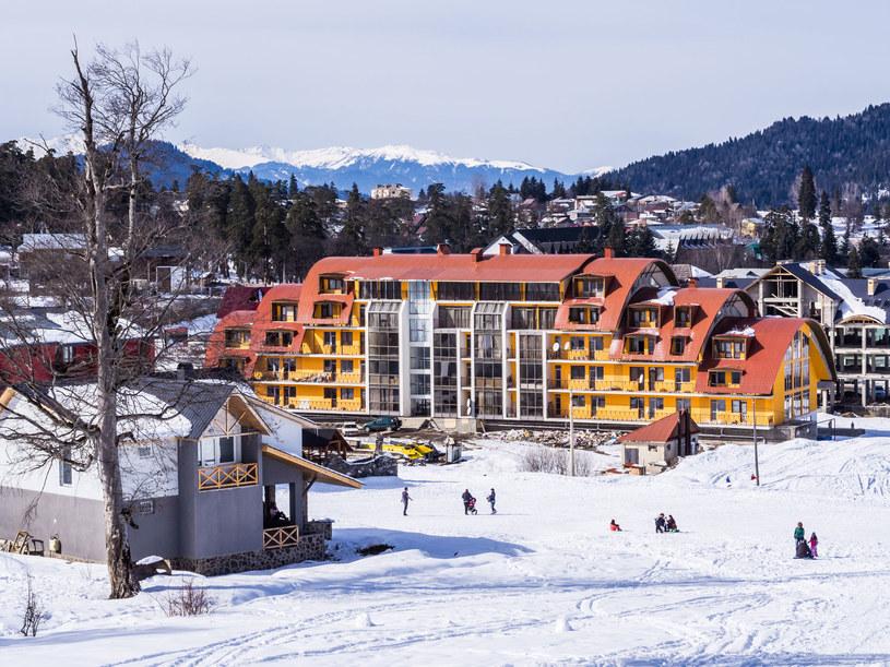 Gruzja, ośrodek narciarski Bakuriani /Magdalena Paluchowska /123RF/PICSEL