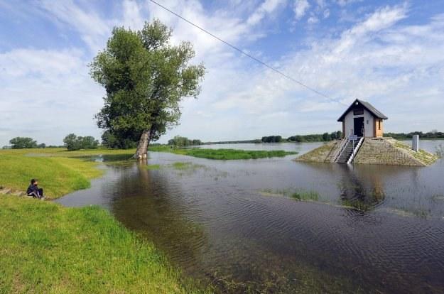 Grzegorz Kołodko uważa, że trudno jest obecnie ocenić konsekwencje ekonomiczne powodzi /AFP