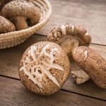 Grzybki shiitake - jak wpływają na zdrowie?