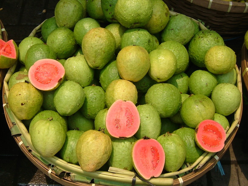 gujawa owoc /© Photogenica