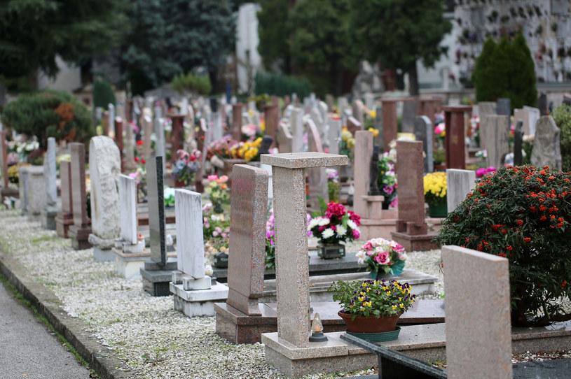 Gutek na pierwszą randkę zabrał Kingę na grób matki /123RF/PICSEL