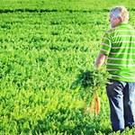 """""""GW"""": Rolnicy żyją z dotacji unijnych"""