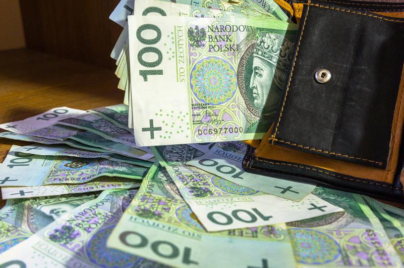 Gwarantowany dochód podstawowy. Co na to ekonomiści? /123RF/PICSEL
