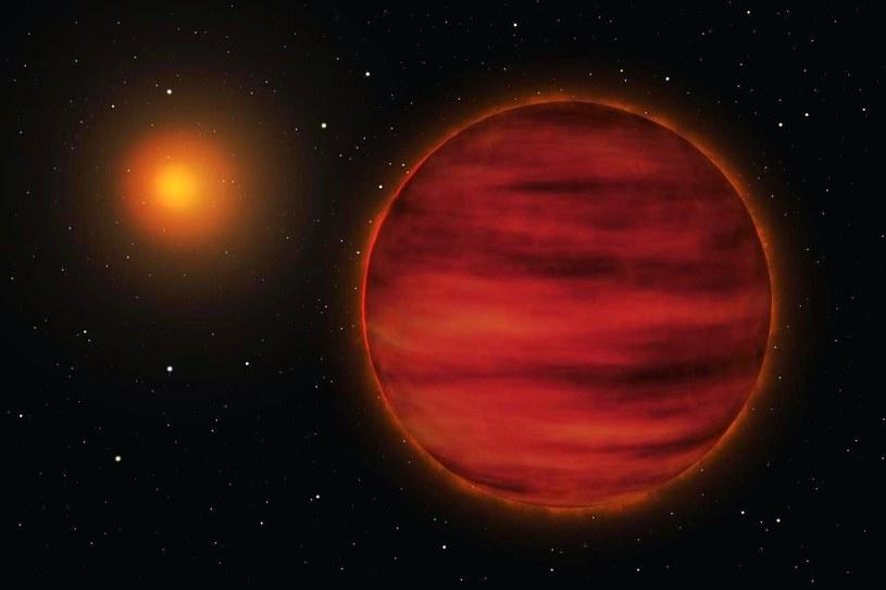 Gwiazda Gliese 710 cały czas zbliża się do Ziemi /materiały prasowe