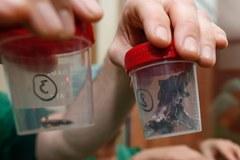 Gwoździe, śruby. Te przedmioty wyjęto z ciał rannych w zamachach w Brukseli