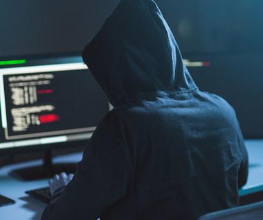Haker, który włamał się na serwery Nintendo, przyznał się do winy