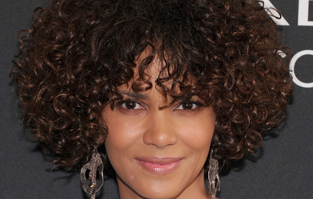 Halle Berry /Jamie McCarthy /Getty Images