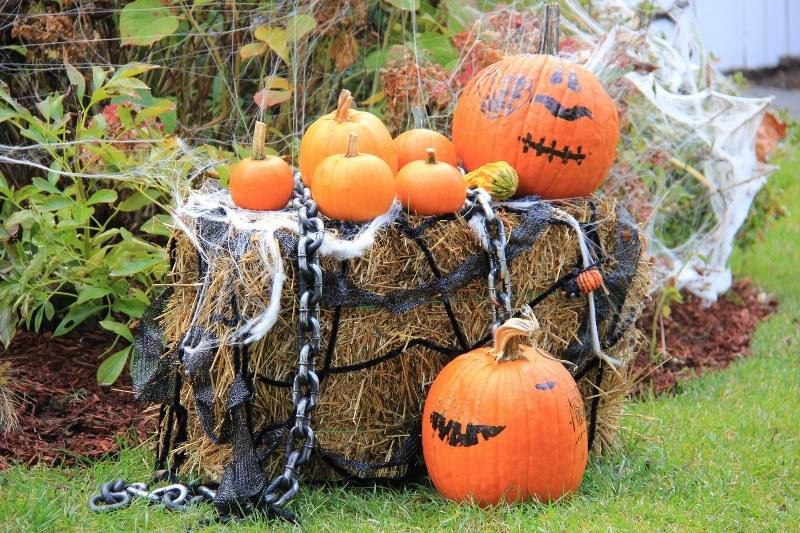 Halloween porywa nawet sztywniaków w garniturach w biurowym Waszyngtonie /Paweł Żuchowski /RMF FM