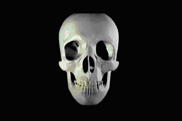 Halloween to dla hakerów czas internetowych łowów /materiały prasowe