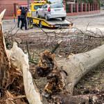 Halny zrywał dachy i przewracał drzewa. Wiało ponad 140 km/h