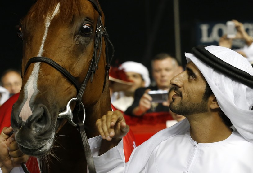 Hamdan bin Mohammed Al Maktoum /AFP