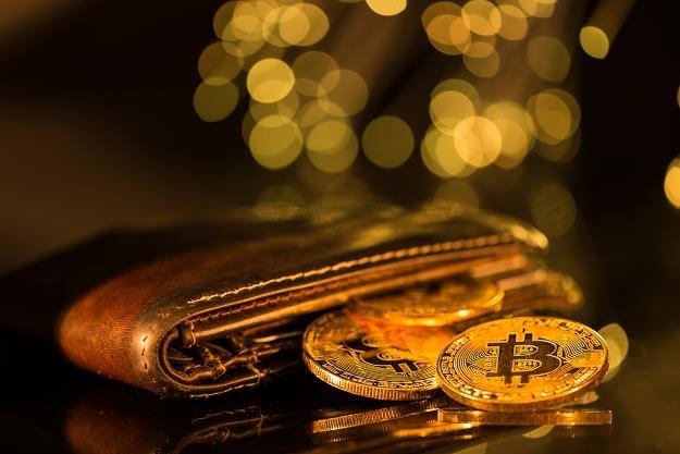 Handel wirtualnymi walutami: Nie będzie podatku PCC /©123RF/PICSEL