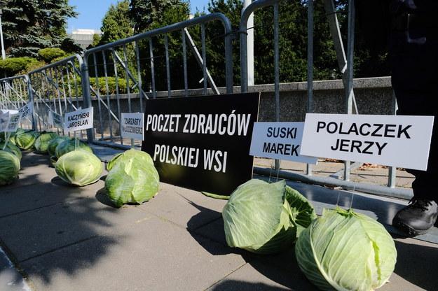 Happening Agrounii przed budynkiem Sejmu w Warszawie /Mateusz Marek /PAP