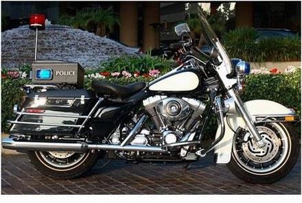 Harley davidson /INTERIA.PL