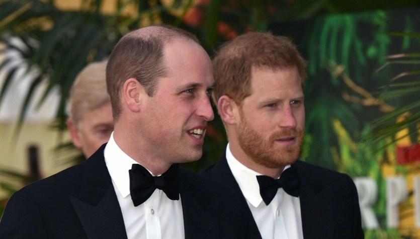 Harry i William. Dwie różne osobowości!