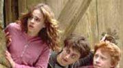 """Harry Potter"" w kawałkach?"